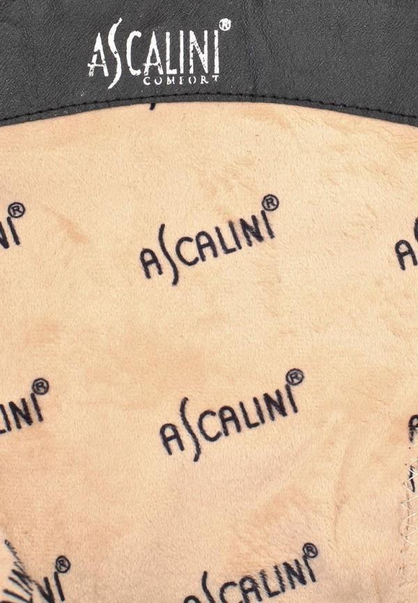 Женские сапоги Ascalini C14861: изображение 6