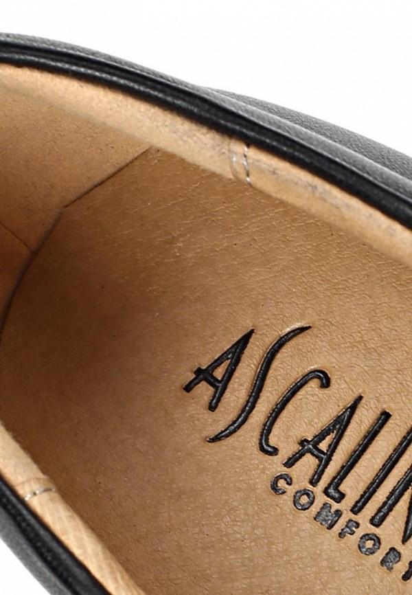 Туфли на плоской подошве Ascalini T14986: изображение 13