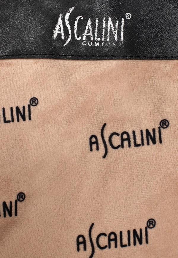 Женские сапоги Ascalini CE8685BF: изображение 6