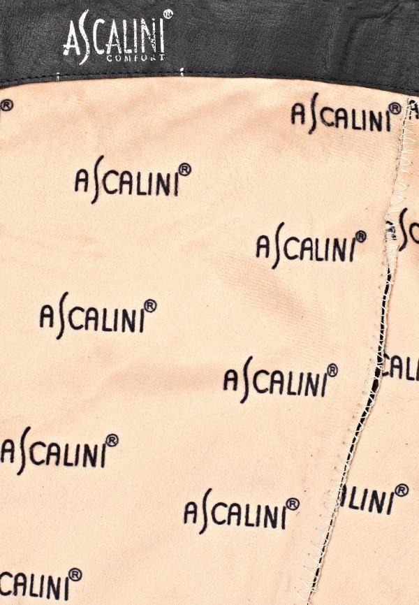 Ботфорты Ascalini CE8686BF: изображение 12