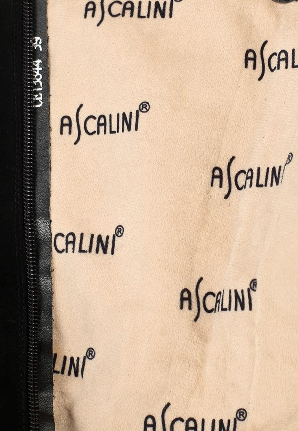 Женские сапоги Ascalini CE13844: изображение 6