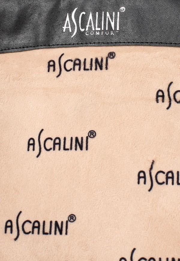 Женские сапоги Ascalini CE14097: изображение 6