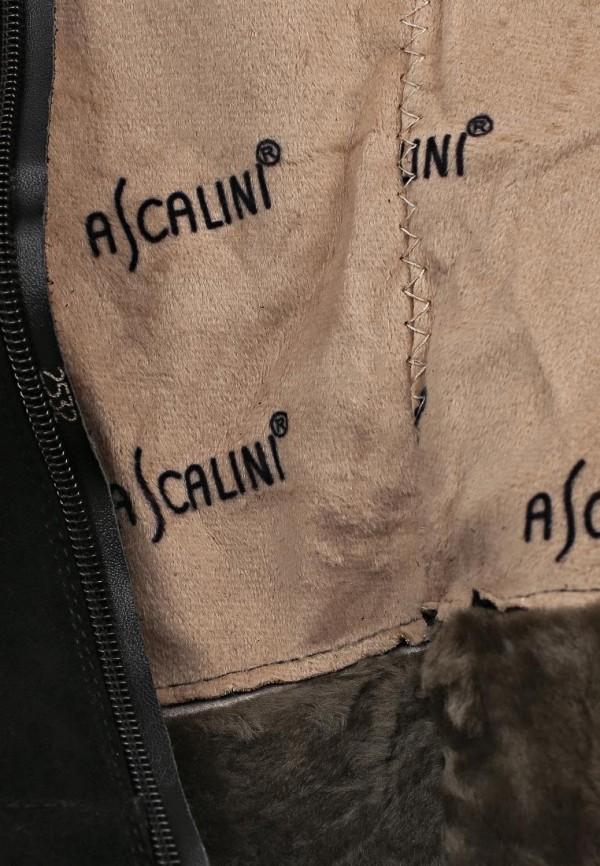 Ботфорты Ascalini CE14117: изображение 13