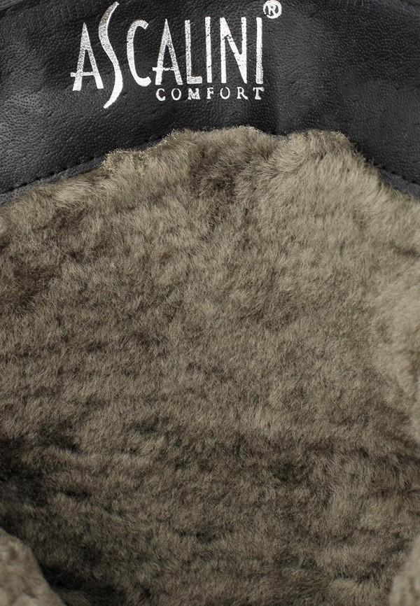 Женские сапоги Ascalini DZ14242: изображение 6