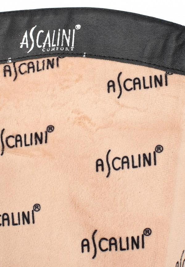 Женские сапоги Ascalini CE14403: изображение 6