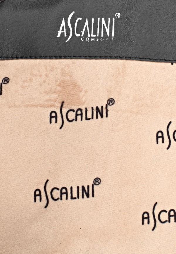 Женские сапоги Ascalini CE14512: изображение 6