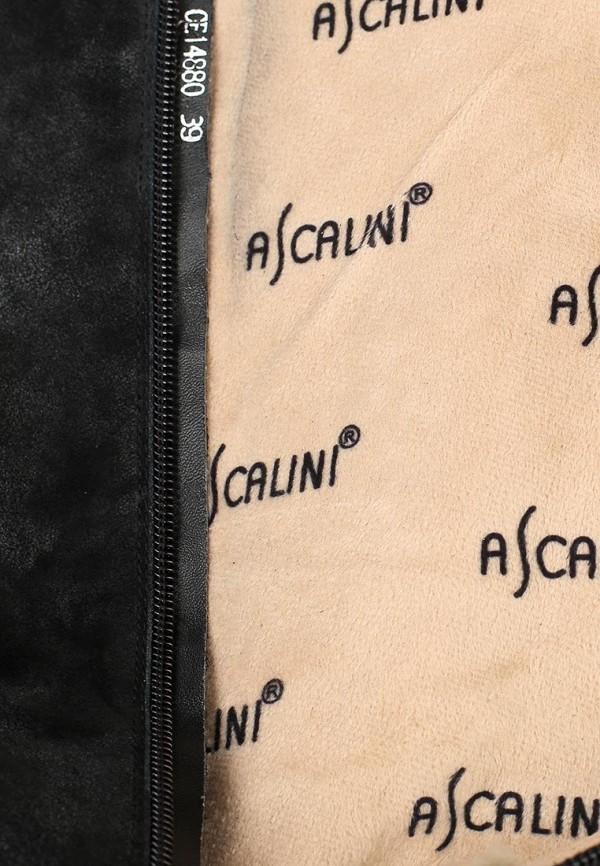 Женские сапоги Ascalini CE14880: изображение 6