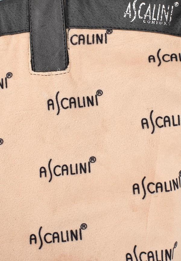 Сапоги на каблуке Ascalini CE13781: изображение 13