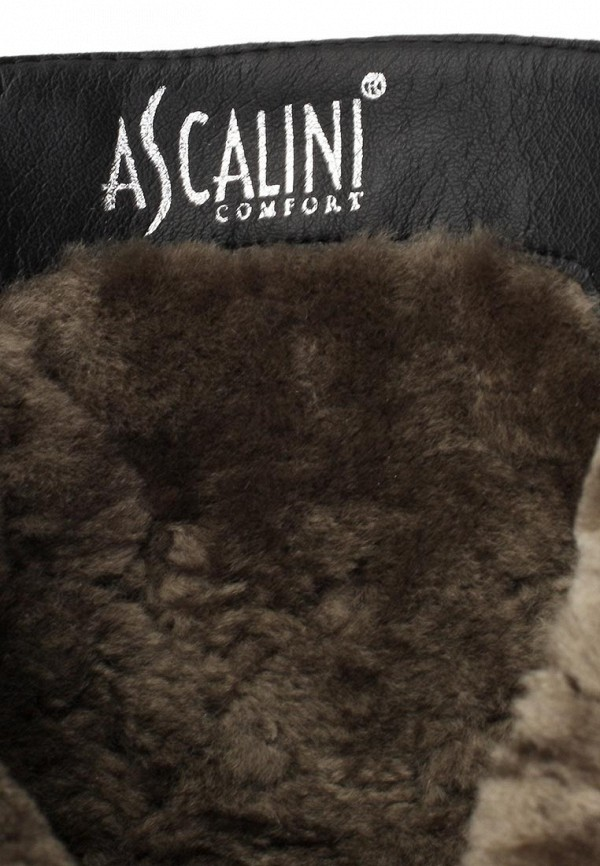 Женские сапоги Ascalini DZ13786: изображение 12