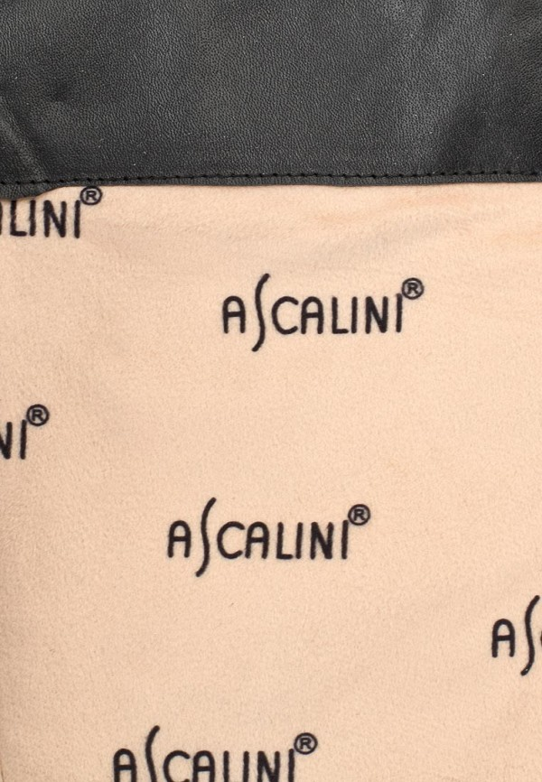 Женские сапоги Ascalini CE13788: изображение 6