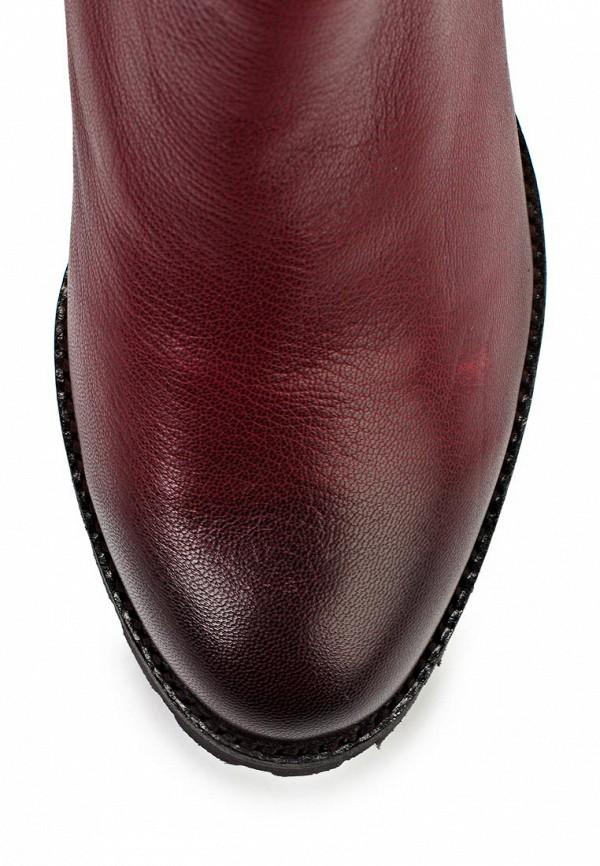 Женские сапоги Ascalini D13879: изображение 11