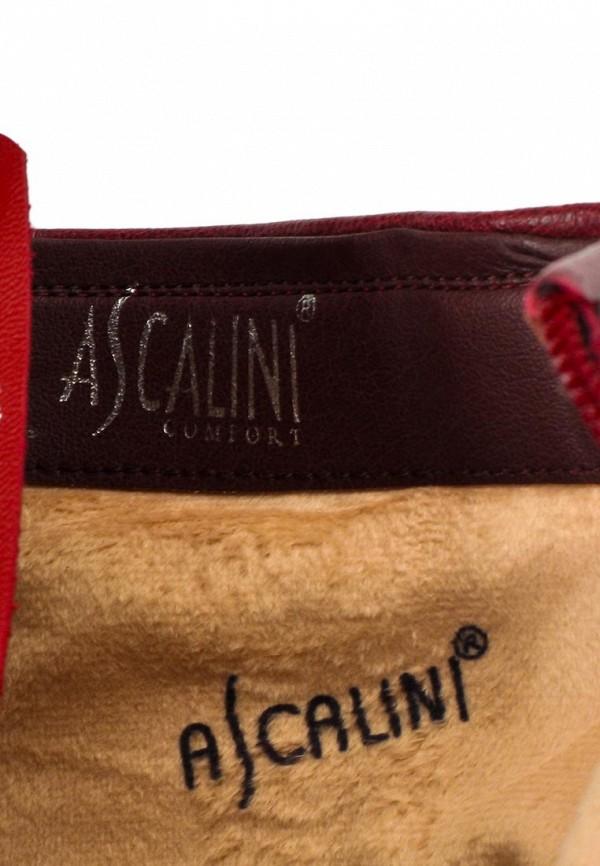 Женские сапоги Ascalini D13879: изображение 13
