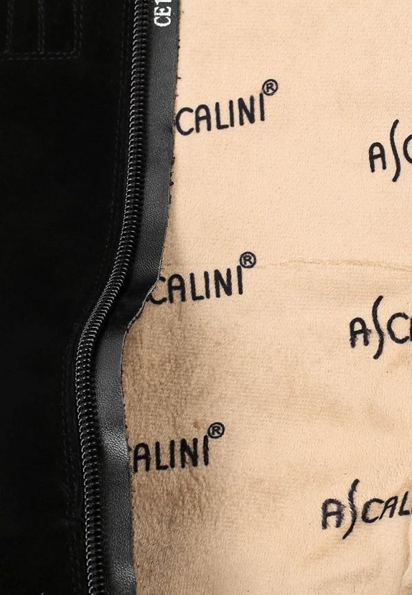 Женские сапоги Ascalini CE13885: изображение 6