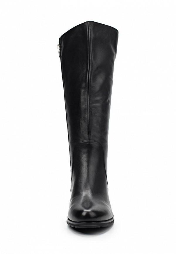 Женские сапоги Ascalini CE14205: изображение 3