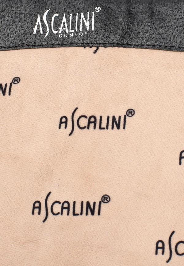 Женские сапоги Ascalini CE14347: изображение 6