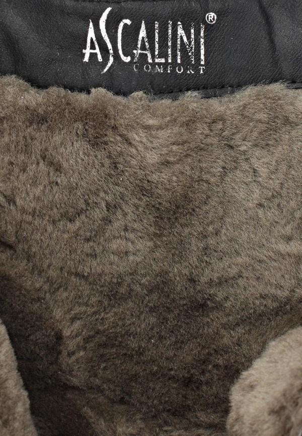 Женские сапоги Ascalini DZ95-B95K: изображение 13