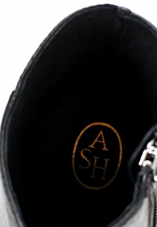 Ботильоны на каблуке Ash (Аш) AMBER: изображение 15