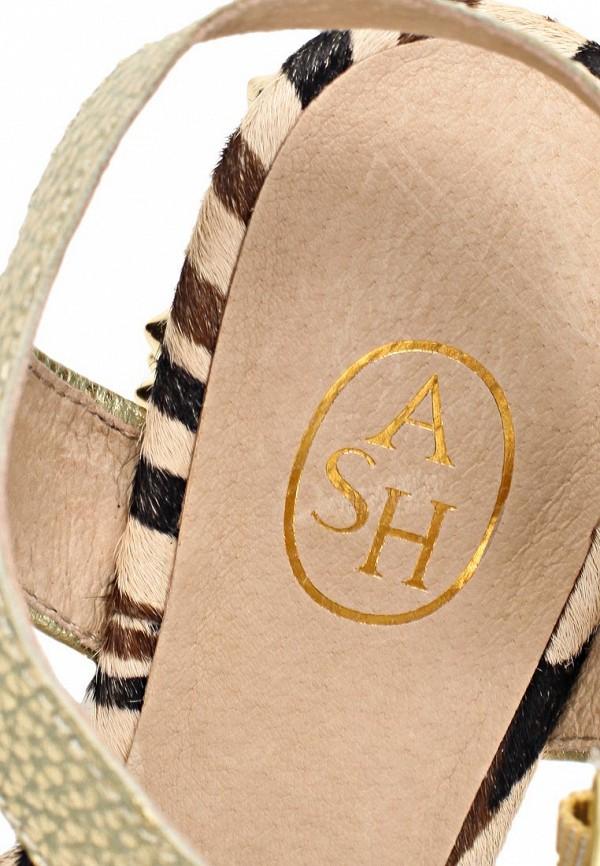 Босоножки на каблуке Ash (Аш) BEAUTY BIS: изображение 15