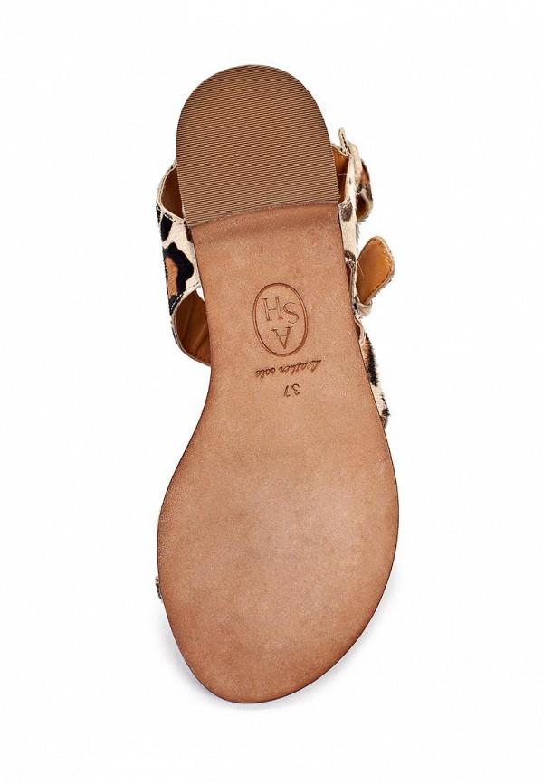 Женские сандалии Ash (Аш) MAEVA: изображение 11