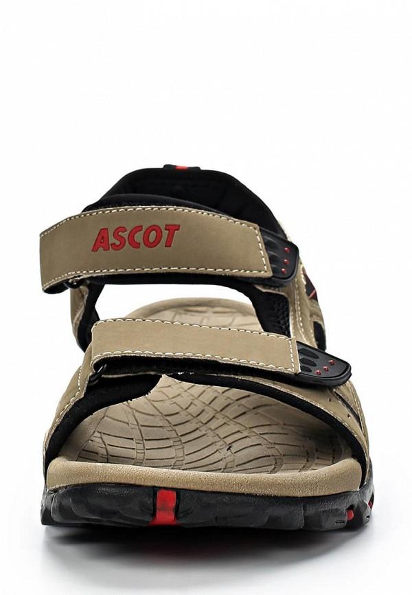 Мужские сандалии Ascot SL 9043 TORO: изображение 4