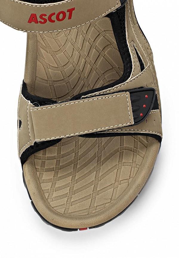Мужские сандалии Ascot SL 9043 TORO: изображение 6