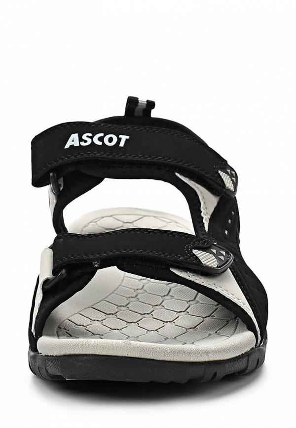 Мужские сандалии Ascot SL 9170 PORCUPINE: изображение 7