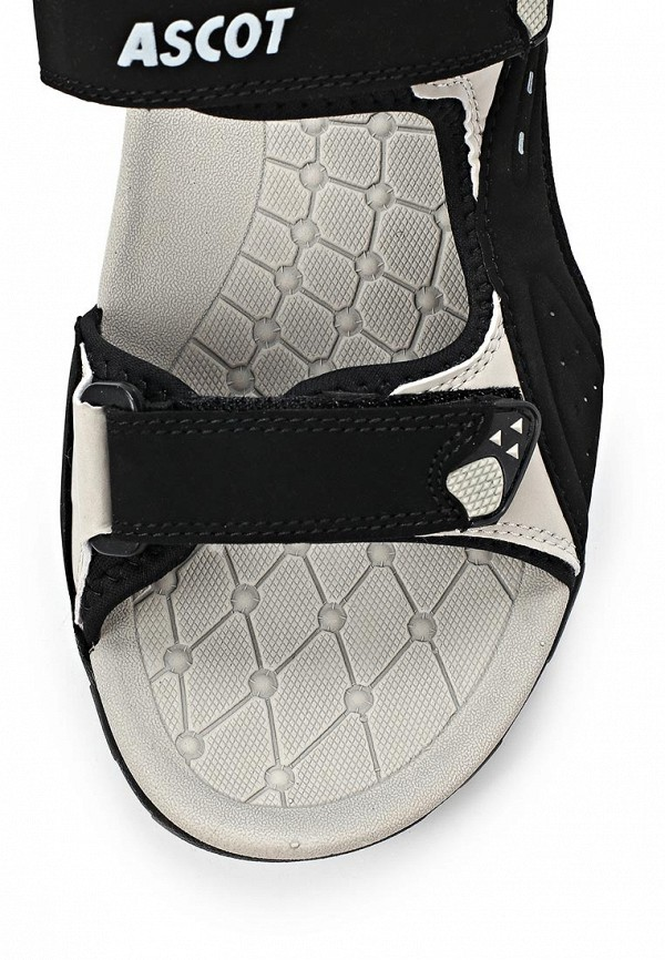 Мужские сандалии Ascot SL 9170 PORCUPINE: изображение 11