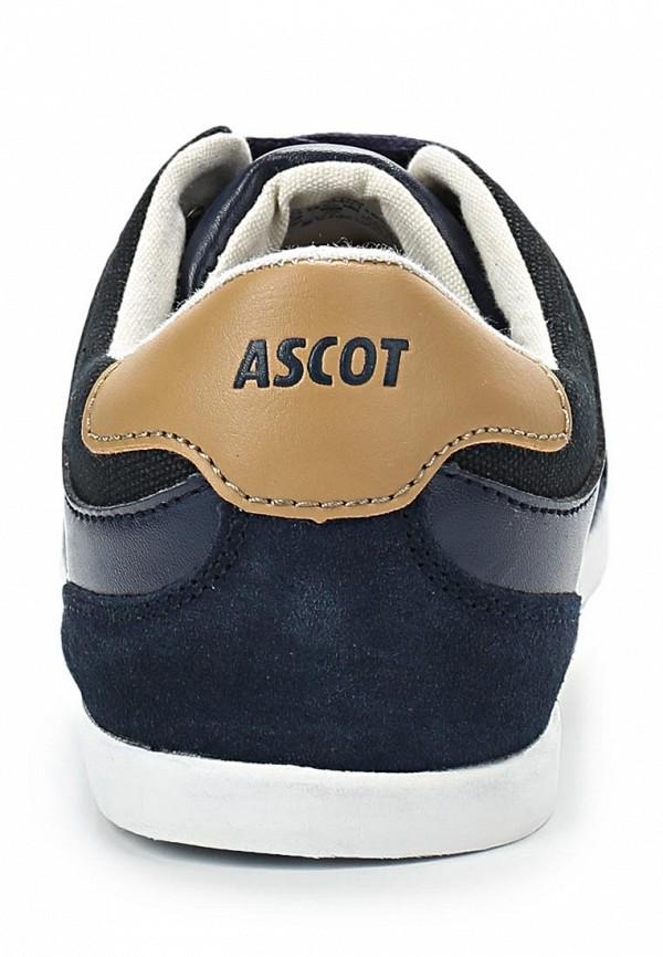 Мужские кеды Ascot AM 01162 TOM: изображение 3