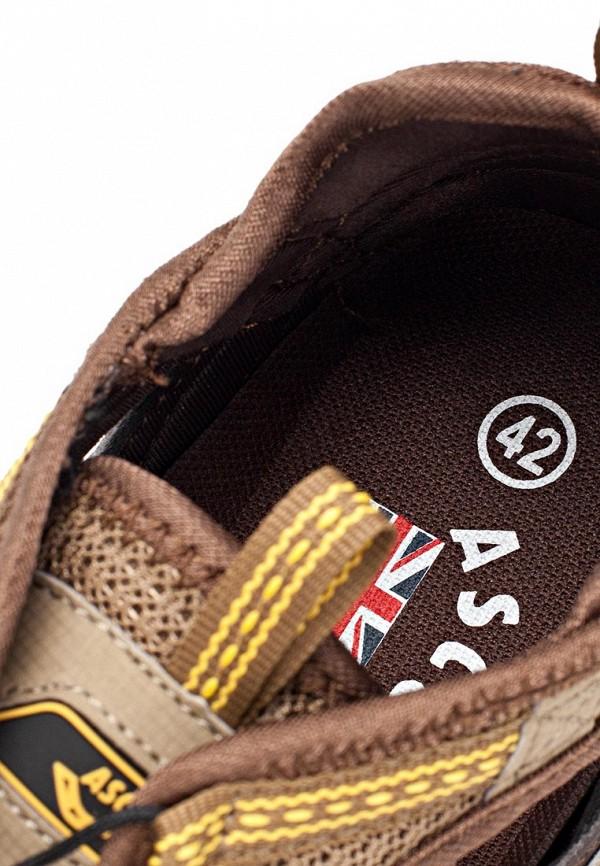 Мужские сандалии Ascot SL 9462 BAHAMA: изображение 13