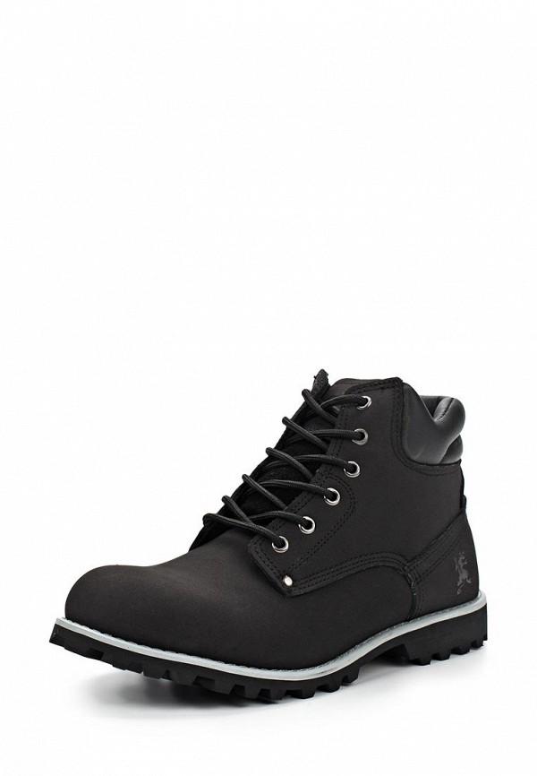 Мужские ботинки Ascot SH 2687-021M STAMFORD: изображение 2