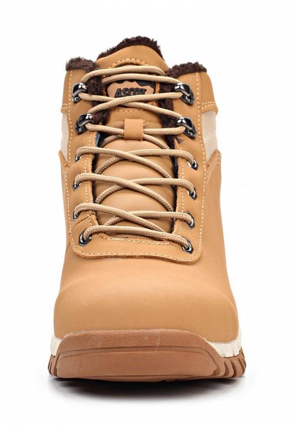 Мужские ботинки Ascot SH 2360 STUDENT: изображение 4