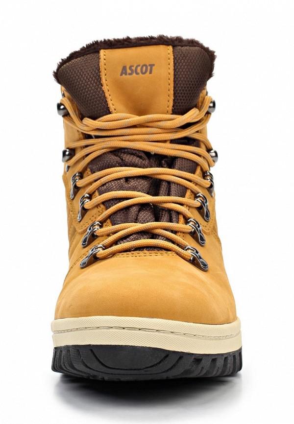 Мужские ботинки Ascot ST 0210-01 PITER: изображение 6