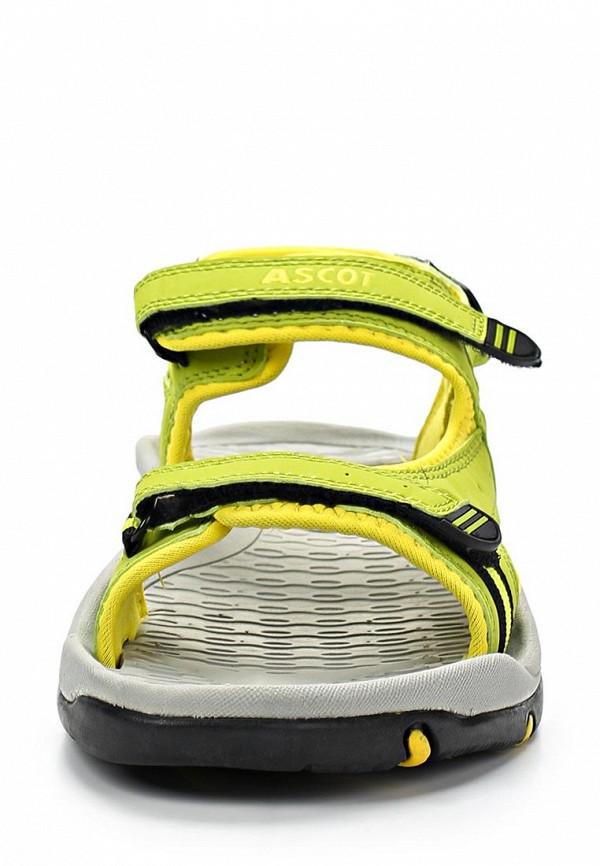 Женские спортивные сандалии Ascot SL 9373 TULIP: изображение 8