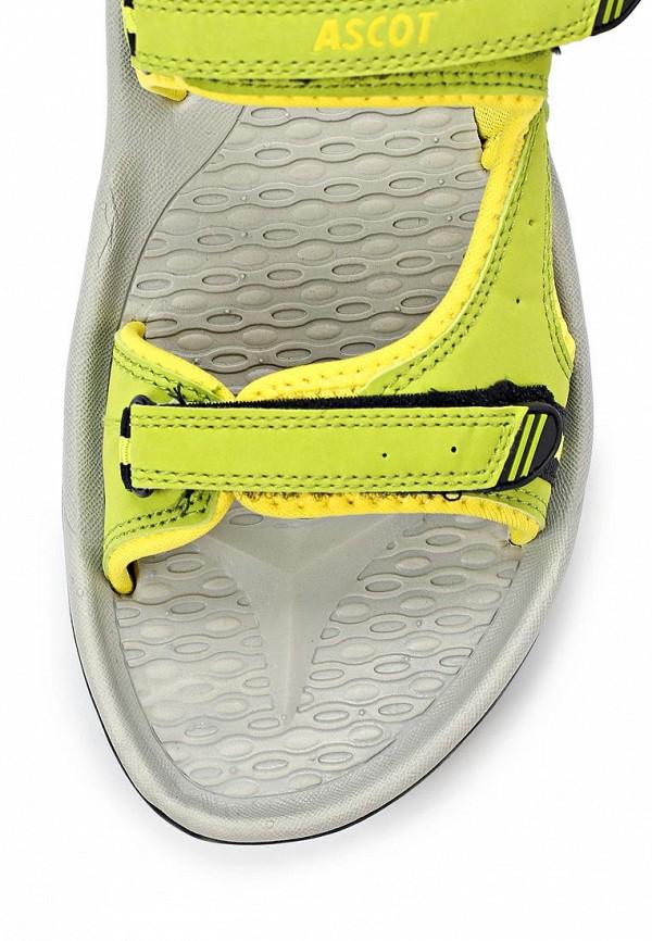 Женские спортивные сандалии Ascot SL 9373 TULIP: изображение 12