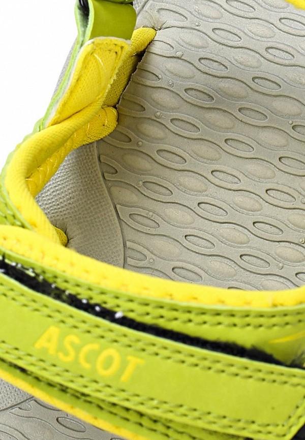 Женские спортивные сандалии Ascot SL 9373 TULIP: изображение 14