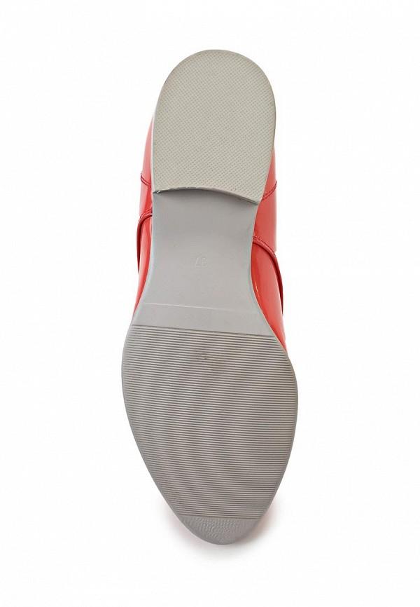 Женские ботинки Avenir 2383-MI41077R: изображение 3