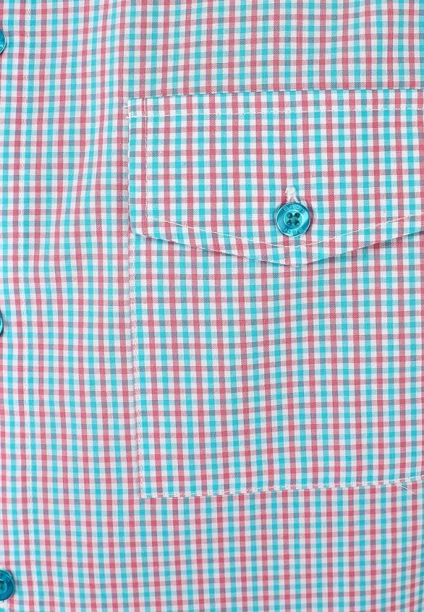 Рубашка Baon (Баон) B684007: изображение 3