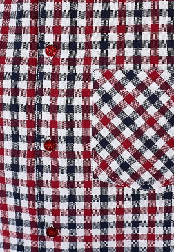 Рубашка Baon (Баон) B684009: изображение 3