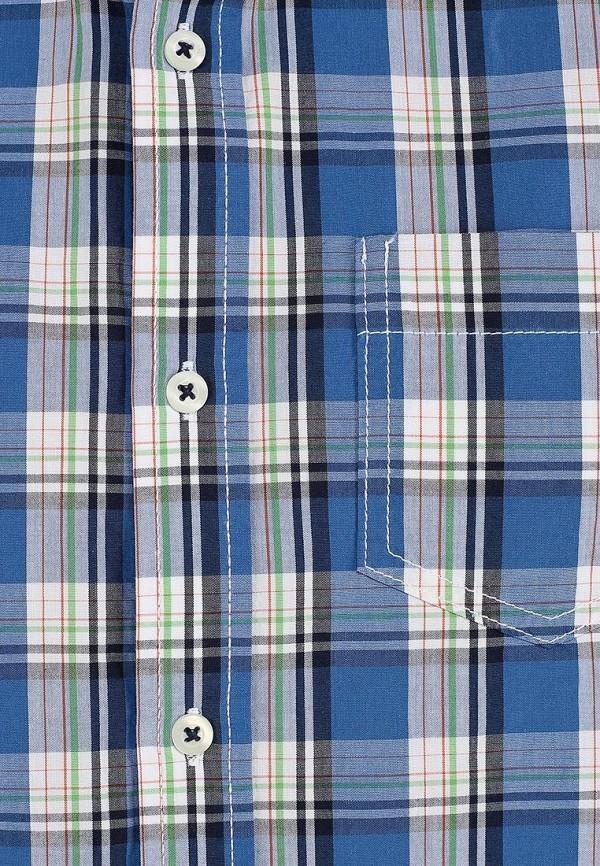 Рубашка Baon (Баон) B684023: изображение 3