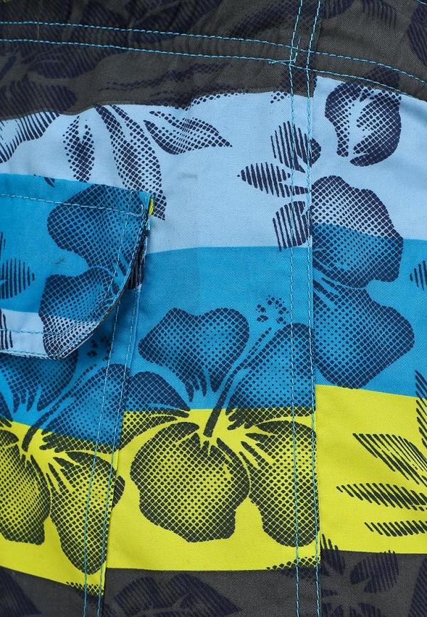 Мужские шорты для плавания Baon (Баон) B824419: изображение 5