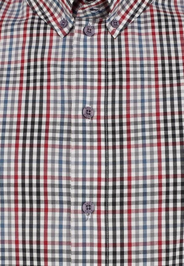 Рубашка Baon (Баон) B664001: изображение 3