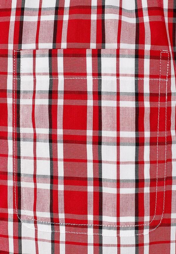 Рубашка Baon (Баон) B664004: изображение 3