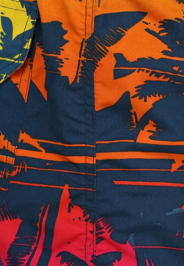 Мужские шорты Baon (Баон) B824422: изображение 3