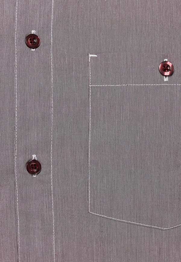 Рубашка с длинным рукавом Baon (Баон) B664504: изображение 4