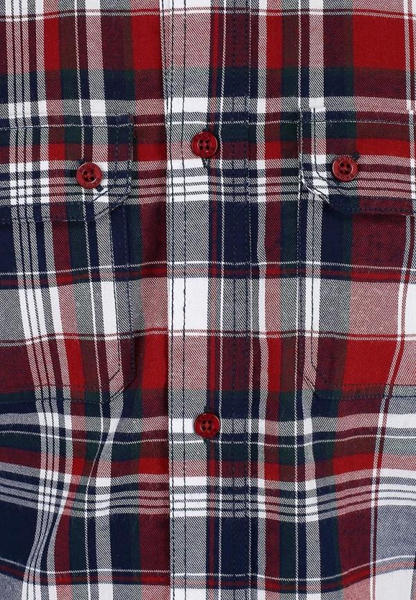 Рубашка Baon (Баон) B663515: изображение 3