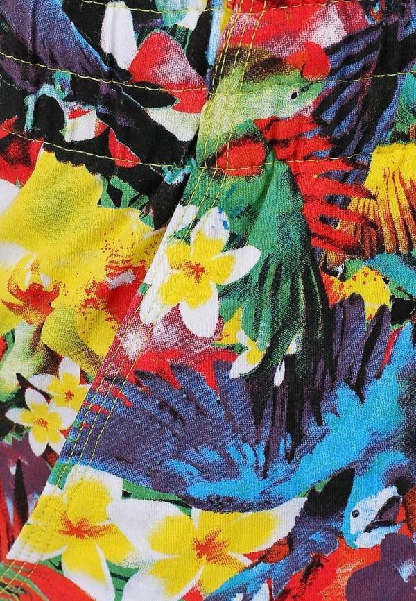 Женские шорты Baon (Баон) B324402: изображение 3