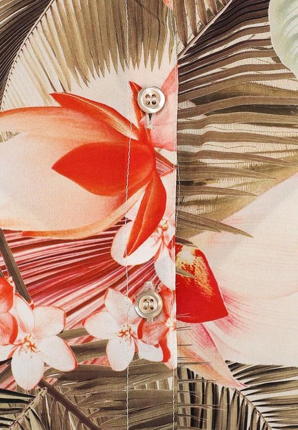 Блуза Baon (Баон) B194006: изображение 6
