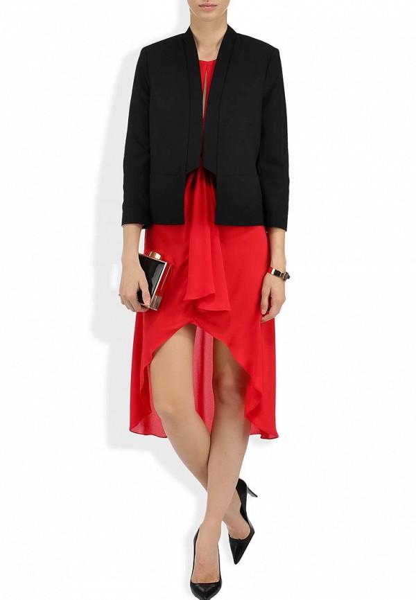 Платье-мини BCBGMAXAZRIA WQR62A56: изображение 11