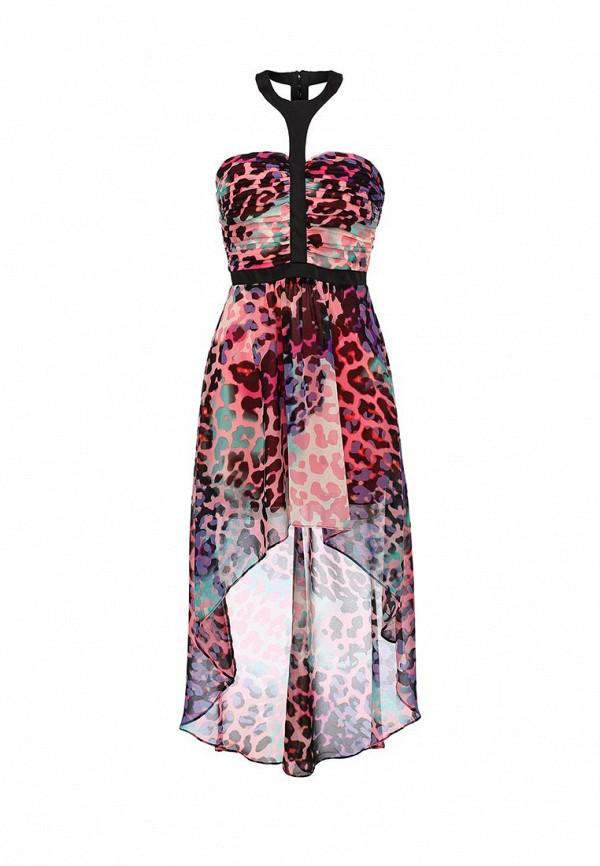 Платье-макси Bebe (Бебе) 70EDA101N646: изображение 1