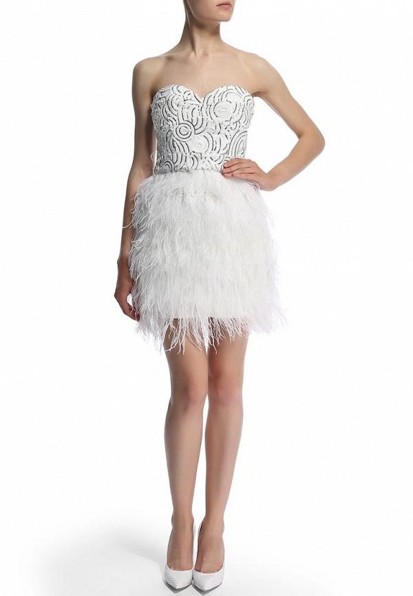 Вечернее / коктейльное платье Bebe (Бебе) 70A5G101N520: изображение 6